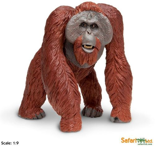 Safari Wildlife Wonders - Orang-Utan XL-Figur